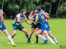 170909_Rugby Tourist vs TGS Hausen_027